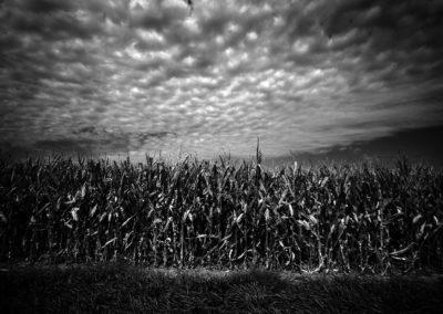Nebraska… the big empty